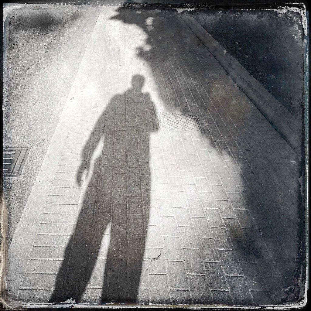 ombra mauro